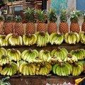 image plateau_banana_underhiswings-jpg